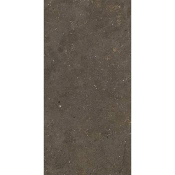 Плитка Fiandre Solida Brown 100х100 (GAB600C100006) - Фото №1